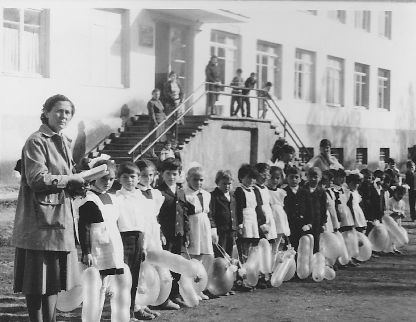 Средняя общеобразовательная школа в с. Цихисджвари (Грузия)